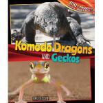 【预订】Komodo Dragons and Geckos