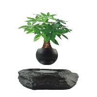 磁悬浮盆栽磁悬浮摆件悬浮微景观办公室装饰家居创意摆件礼品礼物