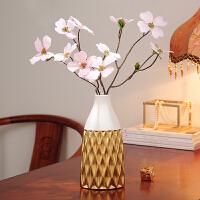 花瓶摆件客厅插花创意摆设简约现代家居餐桌花瓶摆件陶瓷干花花艺