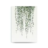 现代简约客厅书房玄关绿植装饰画沙发背景墙挂画ins风格无框画 60*40cm 25mm厚板 独立