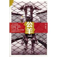 【新书店正版】 公羊 张忌 上海文艺出版社 9787532150571