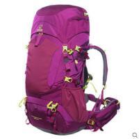 双肩休闲野营包大容量户外双肩包男女专业登山包防雨耐磨户外50L