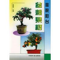 【二手旧书9成新】庭院阳台盆栽果树肖建忠中国农业出版社