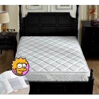 弹簧床垫软硬两用双人1.5m 1.8m米椰棕棕垫20cm厚