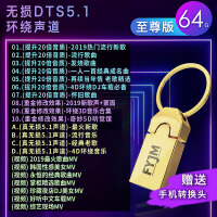 汽车车载音乐U盘DTS环绕5.1声道歌曲无损优盘64G重低音高音质MP3 官方标配