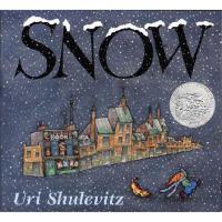 Snow 凯迪克银奖绘本 雪