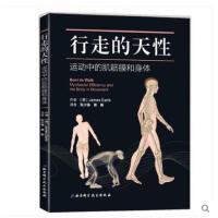 行走的天性:运动中的肌筋膜和身体 本书是为运动治疗师物理治疗师整骨师整脊师推拿为患者进行治疗的人们而准备筋膜健身