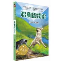 动物小说王国・沈石溪自选中外精品・猎狗霹雳虎
