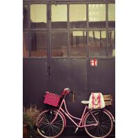 【预订】Pink Bike with a Pink Basket Journal: 150 Page Lined No