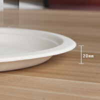 加大(10只装)一次性纸碟纸盘子可降解碟子餐具烧烤用品工具
