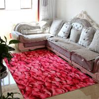 厚长方形客厅沙发茶几地毯进门户大门口门厅玄关阳台卧室厨房地毯