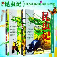 【正版授权】全2册 昆虫记世界经典动物名著 美绘版上下册 小学生课外阅读书 儿童青少年版阅读书 法布尔著王光中国少年儿