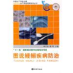 图说鳗鲡疾病防治 林天龙,龚晖 海洋出版社 9787502771959