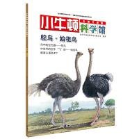 小牛顿科学馆(全新升级版)・鸵鸟・始祖鸟