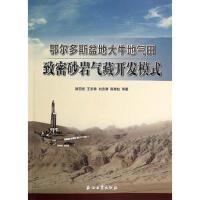[95新正版二手旧书] 鄂尔多斯盆地大牛地气田致密砂岩气藏开发模式