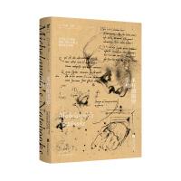 米开朗琪罗手稿 大师的素描 书信 未读出品