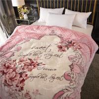 双层珊瑚绒毯子冬季加厚法兰绒拉舍尔毛毯男单人保暖女冬用被子 200cmx230cm 8斤