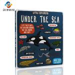 英文原版 Little Explorers Under the Sea 小探险家系列之海洋纸板书 儿童科普读物 4-6