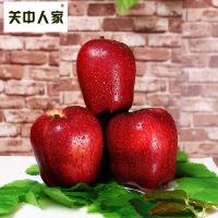 【陕西乾县馆】关中人家 包邮新鲜水果脆甜红苹果蛇果刮泥粉苹果面苹果花牛苹果10斤大果