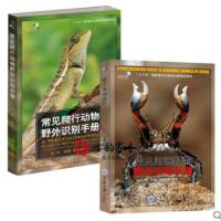 常见海滨动物野外识别手册+常见爬行动物野外识别手册 两册 图文并茂的原创自然读物 科普读物 重庆大学