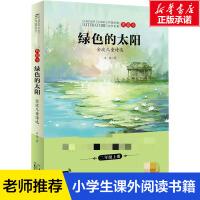 �G色的太�――金波�和���x 金波 正版��籍 新�A��店旗�店文�官�W �L江少年�和�出版社