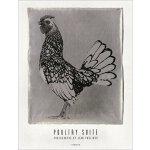 【预订】Jean Pagliuso: Poultry Suite 9783777423791