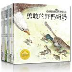 西顿动物记 科普绘本全10册3-4-5-6岁幼儿童动物科普百科儿童早教阅读经典睡前故事书
