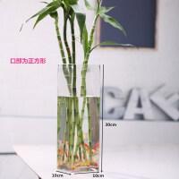 方形水培鲜花百合欧式创意玻璃花瓶透明玻璃花瓶客厅装饰插花摆件