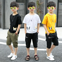 男童夏装新款套装夏季童装短袖两件套中大童韩版潮衣