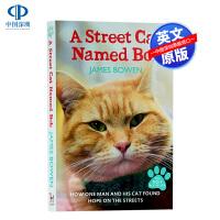 现货 一只名叫鲍勃的街头流浪猫 英文原版 电影同名小说 A Street Cat Named Bob 当bob来敲门
