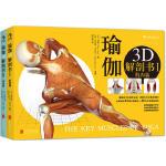 瑜伽3D解剖书全套2册 动作篇+肌肉篇 释肌肉运作与瑜伽体式之间的交互影响瑜伽教程书 基础瑜伽拉伸教程零基础初级入门