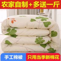 定做纯手工棉花被子被芯春秋被单人棉被冬被双人床垫被褥子学生被