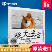 现货【深图日文】柴犬まる 柴犬MARU写真集 狗狗写真 摄影集 小野慎二郎著 日本原版进口