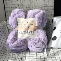 加厚保暖羊羔绒毯子双层法兰绒毛毯被子羊羔绒盖毯床单双人冬季