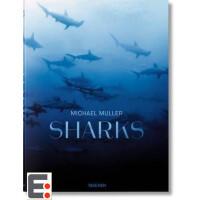 Michael Muller Sharks 迈克尔穆勒艺术摄影画册 鲨鱼摄影作品 大师画册画集