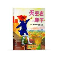 正版 天空在脚下 河北教育出版社 小学四年级必读经典书目 凯迪克金奖 外国儿童绘本故事图书