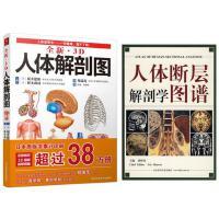 全新3D人体解剖图 +人体断层解剖学图谱人体肌肉解剖运动解剖学断层局部解剖学图谱解剖书 解剖生理学专业基础医学书 运动