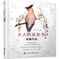 美丽鸟儿 东方智典 绘编 化学工业出版社 9787122244895