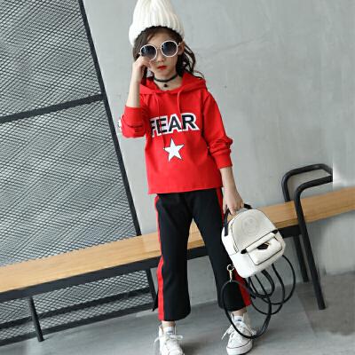 女童运动套装春装新款儿童韩版春秋季中大童女两件套童装秋装