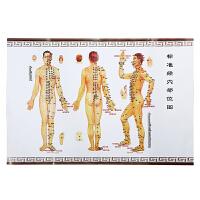 为人牌 标准人体经脉穴位图 A2-175g铜版纸 刮痧 拔罐 艾灸艾条艾绒可参照使用更多优惠搜索【好药师】