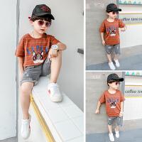 新款套装短袖纯棉T恤韩版夏季童装儿童运动两件套潮
