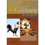 【正版直发】鸡病类症鉴别诊断彩色图谱 王新华 中国农业出版社 9787109133310