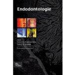 【预订】Endodontologie 9789031372461