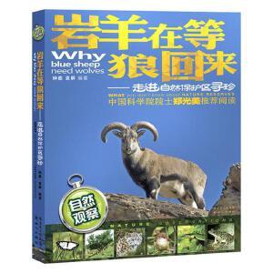 岩羊在等狼回来――走进自然保护区寻珍(中国科学院院士郑光美推荐阅读,几十年自然观察的体验,大量精美的动植物生态照片)
