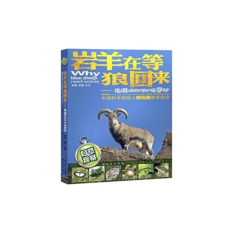 岩羊在等狼回来——走进自然保护区寻珍(中国科学院院士郑光美推荐阅读,几十年自然观察的体验,大量精美的动植物生态照片)