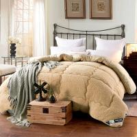 被子冬季单人双人加厚仿羊羔绒保暖被子冬被芯双面毛绒棉被保暖