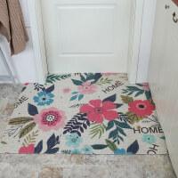 入户门地垫进门门垫门口脚垫地毯门厅垫子客厅塑料丝圈脚踏垫