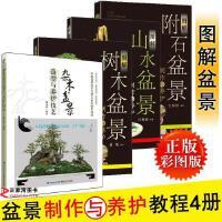 正版4册图解附石盆景:制作与养护+图解山水盆景+图解树木盆
