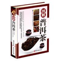 图解普洱茶 彩图精装版 茶文化书 识茶品茶泡茶图典 中国茶道文化书籍