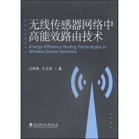 【二手书9成新】无线传感器网络中高能效路由技术汪祥莉,王文波9787562944720武汉理工大学出版社